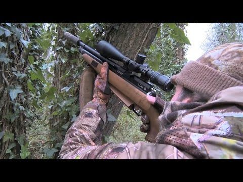 The Airgun Show – roost shooting for pigeons, British Shooting Show and Air Arms S200 review - YouTube