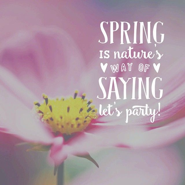 Spring is nature's way of saying let's party! :) #quotes #spring #nature quotesalarm.com