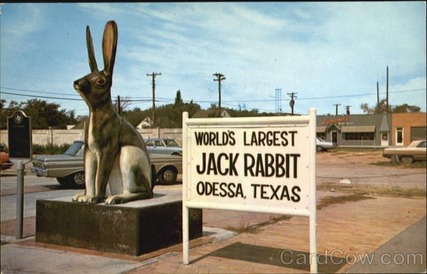 World's Largest Jack Rabbit :: Odessa Texas. This is a real thing. Unbelievable, but there it is.