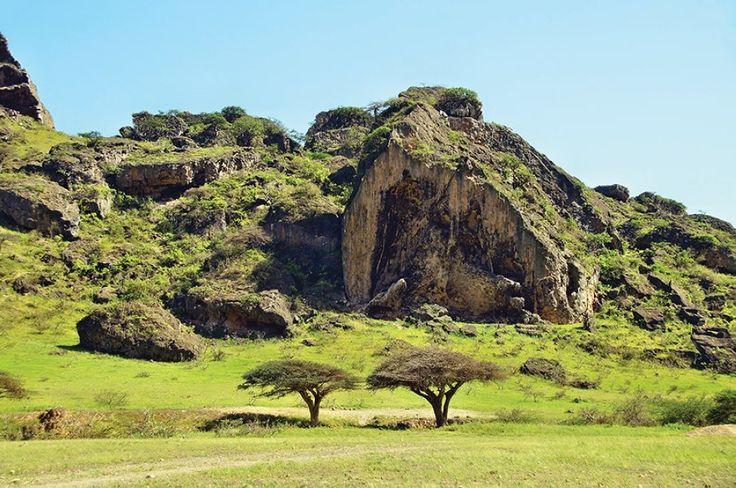 Khareef season transforming Salalah into a green paradise