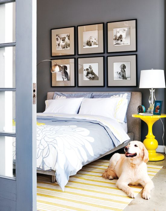 Love the pictures above the bed. Max the Dog probably deserves his own room. Color Your World: Decorating with Yellow - AKA Design