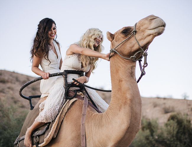 The Bachelor Girls Are Living Our Wildest Dreams - Inspired By This
