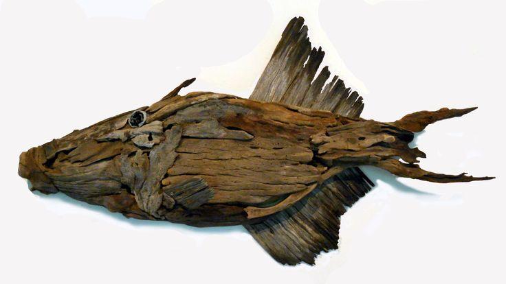 Triggerfish Driftwood by Tony Fredriksson