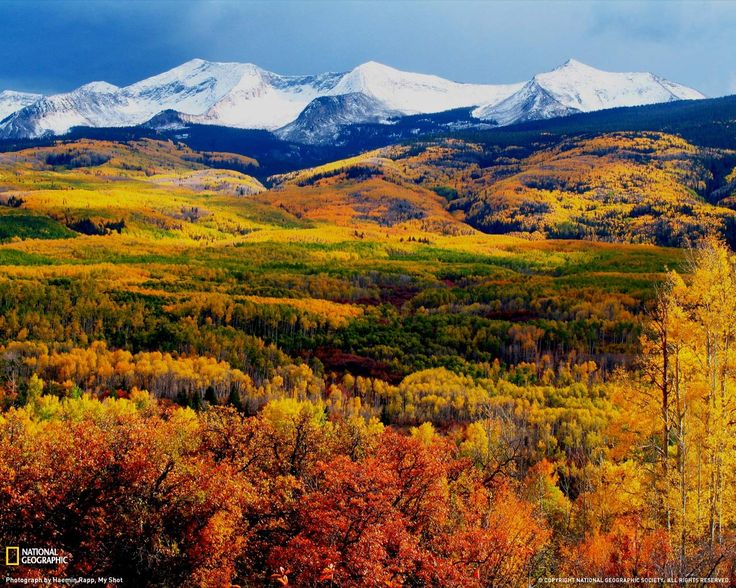 Colorado: Crests Butt, Fall Beautiful, Rocky Mountain, Fall Time, Colorado Home, Colorado Mountain, Sweet Home, Autumn Photography, Fall Color