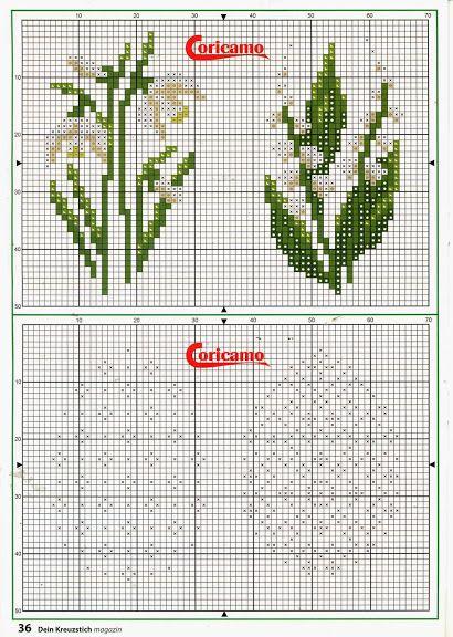 022014 - galbut - Álbumes web de Picasa