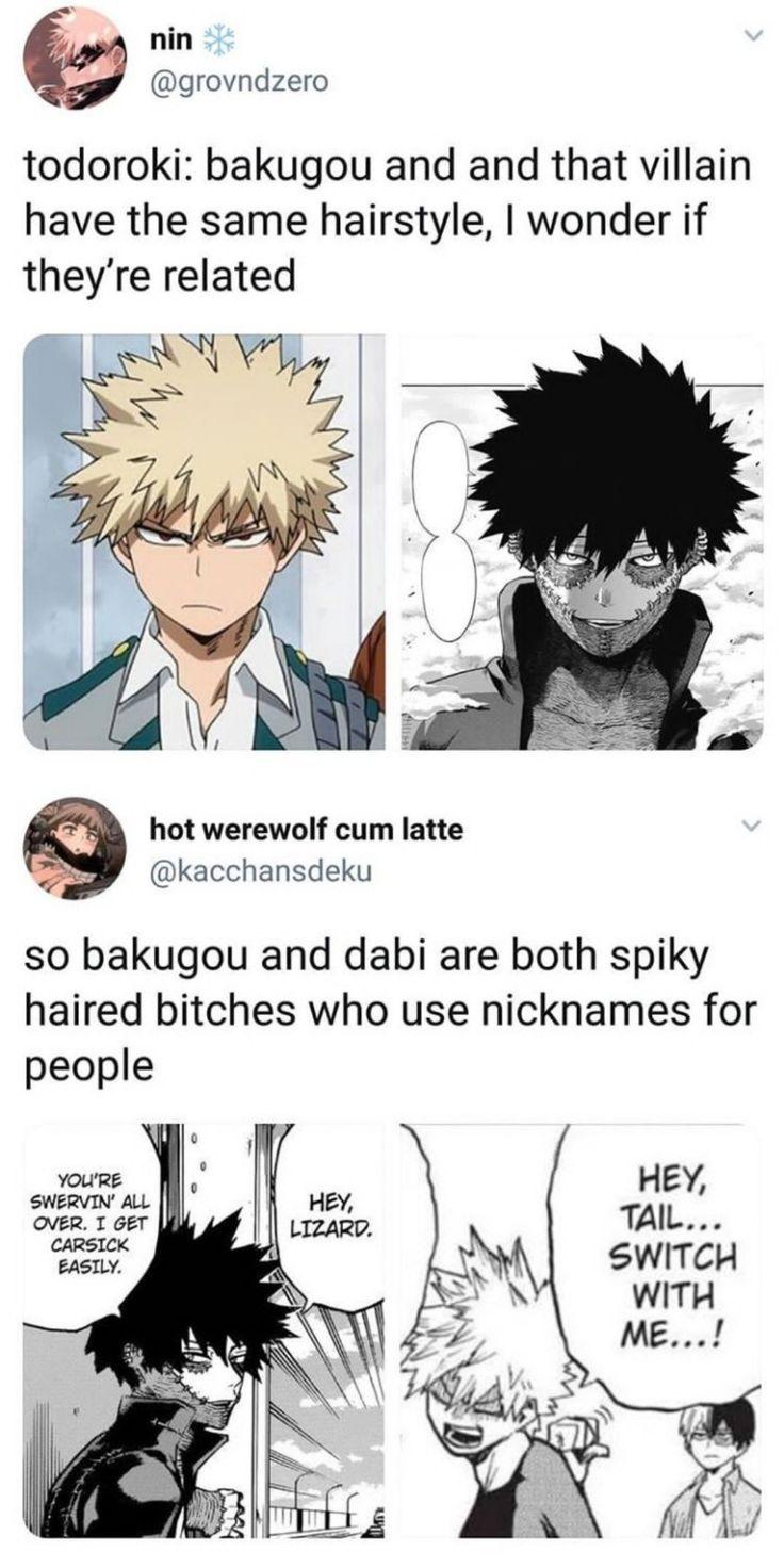 Bakugou Und Dabi Bakugou Dabi Und My Hero Academia Memes Hero My Hero
