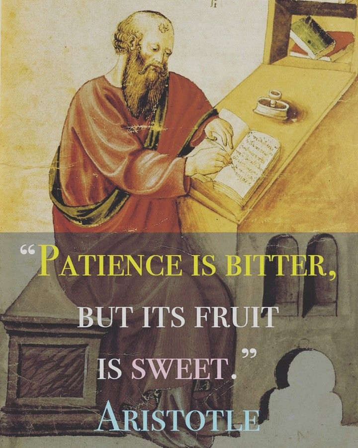Patience Is Bitter But Its Fruit Is Sweet Aristotle Greek Philosopher Inspirational Quote Science Nerd Study Hard Study Motivation