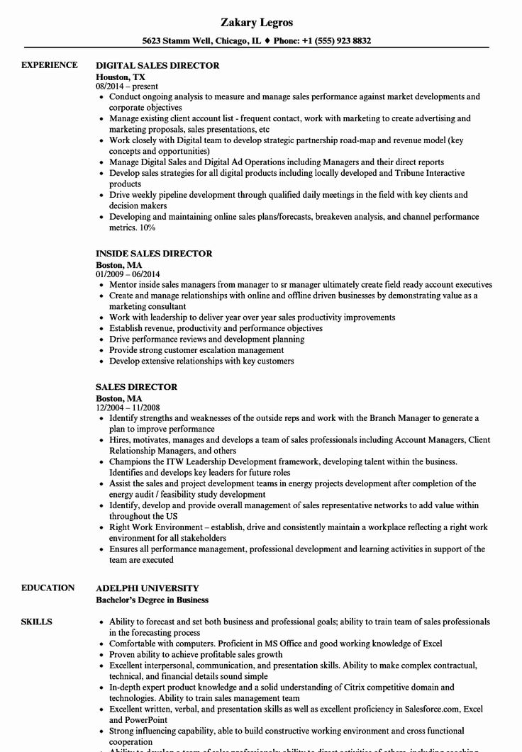 23 Sales Director Resume Examples in 2020 Resume
