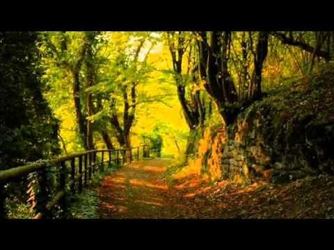 The Nightingale's Song - Mychael Danna & Jeff Danna
