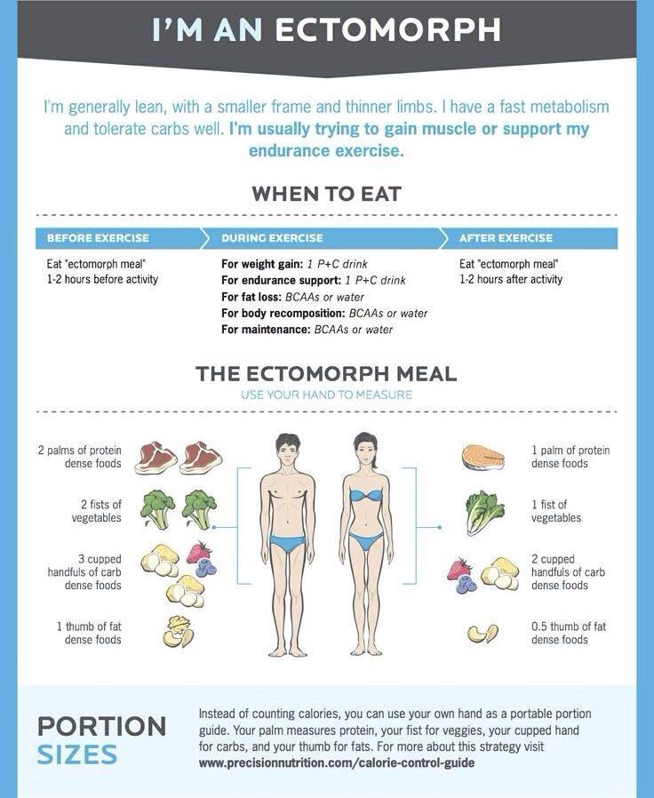 best diet plan for ectomorph
