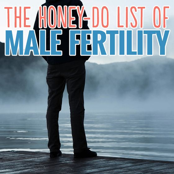 The Honey-Do List of Male Fertility » Daily Mom