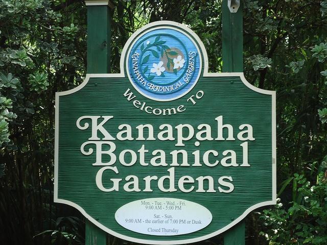 Kanapaha Botanical Gardens, Gainesville Florida.