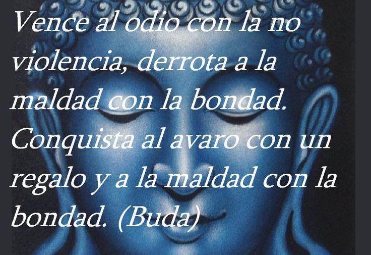 Quotas De La Vida: Buda - ⊹ Imágenes Con Frases De