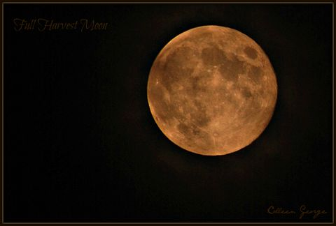 Full Harvest Moon over Nova Scotia's Annapolis Valley (as harvests are underway)!