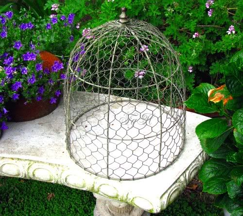 chicken wire garden cloche cover.  future diy project?