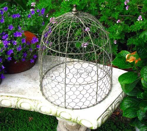 Futuristic Victorian Front Gardens 9 On Garden Design: 25+ Best Ideas About Garden Cloche On Pinterest