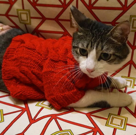 Red Sweater for Cat or Dog  Knit Wool Top  by MerrycatShop on Etsy