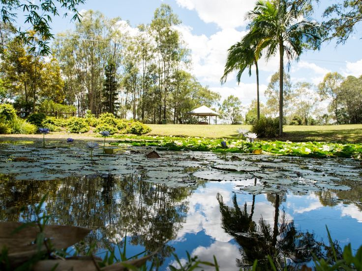 Kholo Gardens - Discover Ipswich