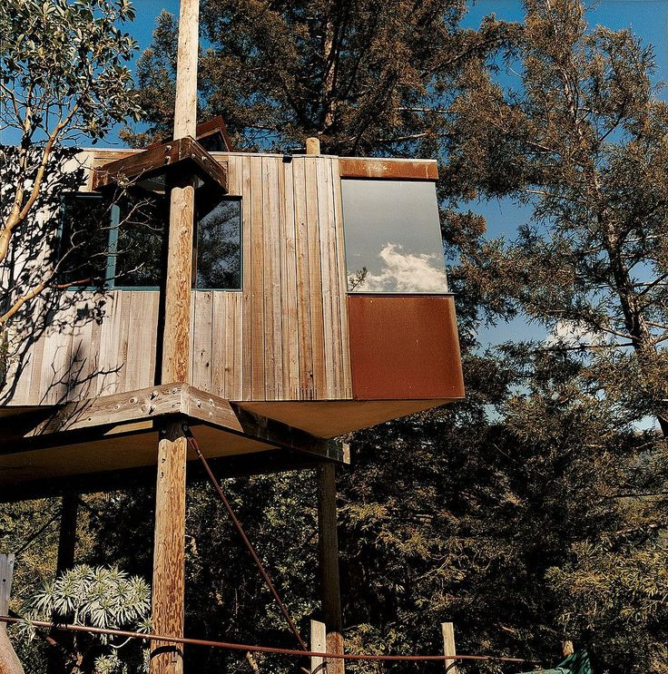 Best Treehouses Images On Pinterest Architecture Treehouse - Contemporary banyon treehouse california