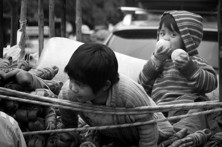 Esta foto me gusto mucho por que es de la novena region , ciudad de temuco , estos niños son hijos de la gente que trabaja con cochayuyos , los sacan de orillas del mar para venderlos en la ciudad en sus carretas a un muy bajo precio , sin duda un trabajo muy sacrificado.      Foto tomada por : https://www.facebook.com/profile.php?id=778323999