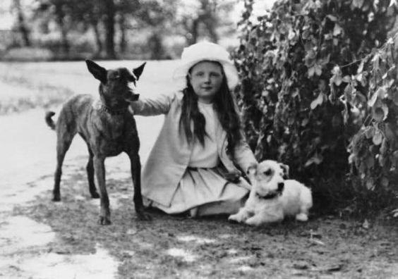 1918: Juliana gefotografeerd met een herdershond met een gestroomde vacht en een kleine terrier