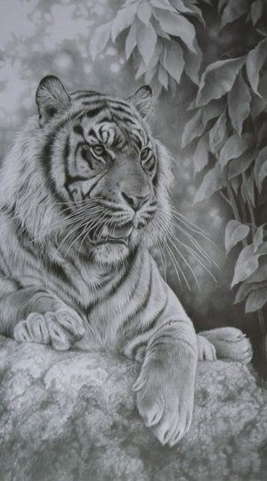Black and White Tiger Art