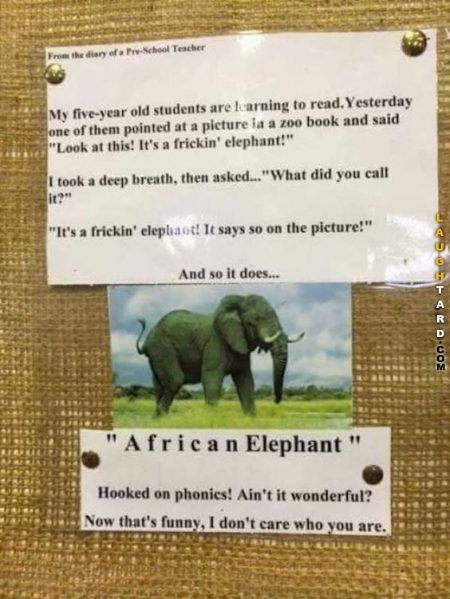 Laughtard  25 Funny Pictures Of The Day