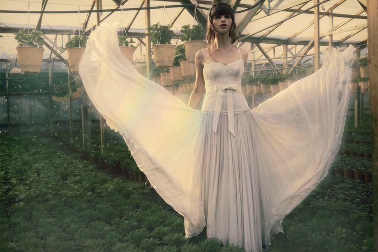 Bride 2104
