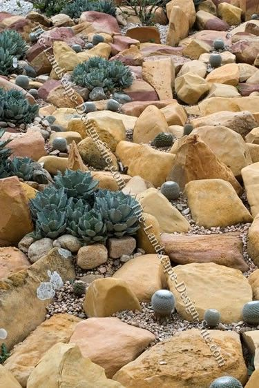 210 best Rock Garden images on Pinterest Flower gardening