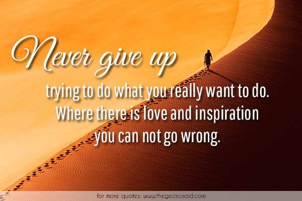 Never give up trying to do what you really want to do. Where there is love and inspiration you can not go wrong.  #give #inspiration #love #never #quotes #really #there #trying #want #where #wrong
