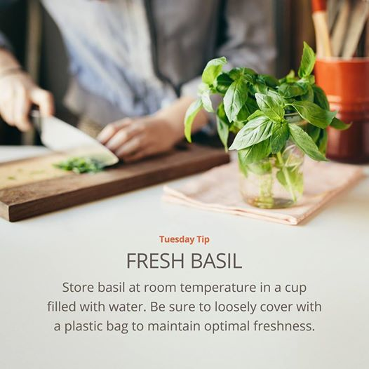 Tuesday Tip: Basil storage!