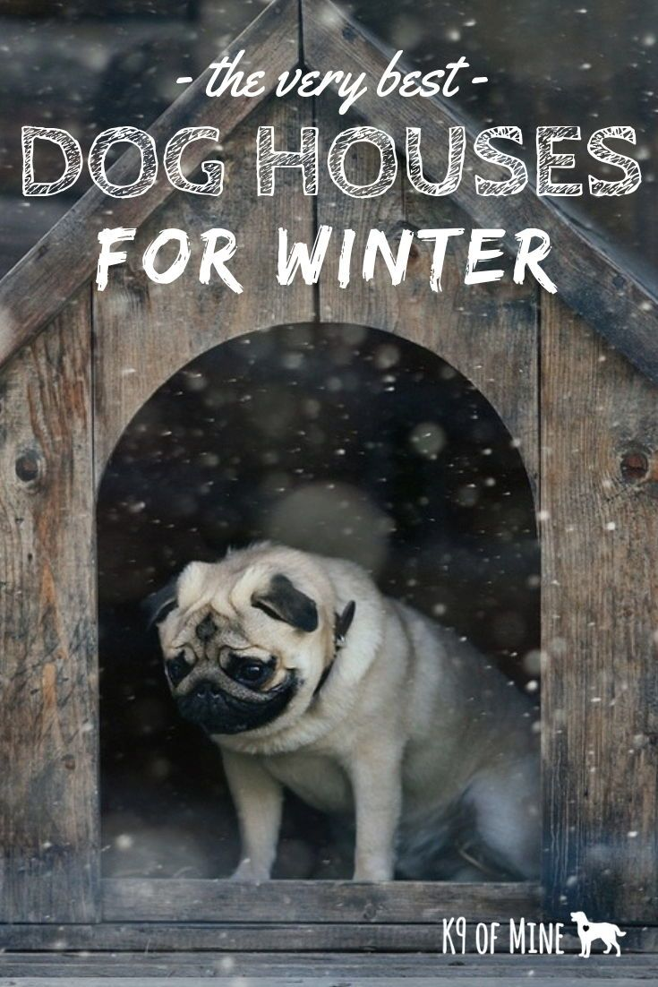 5 Best Winter Dog Houses Keeping Your Canine Warm Cozy With