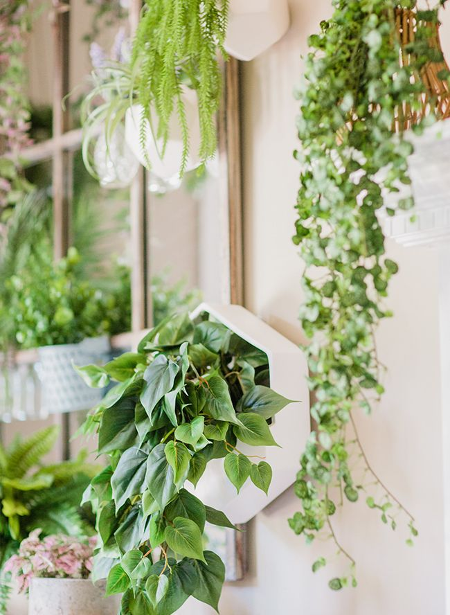 A Diy Living Plant Wall Installation Inspired By This Plant Wall Indoor Plant Wall Plant Wall Diy