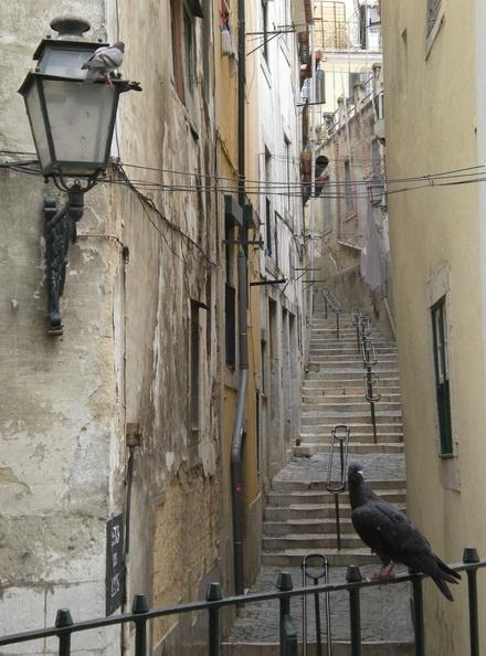 Wąska uliczka w Afamie