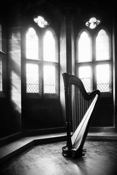 lonely harp