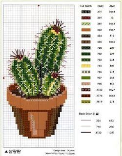 Sandrinha Ponto Cruz: Cactus
