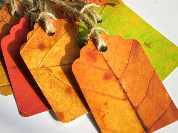 Wonderful autumn leaf tags...color photo copy leaves and cut out into tags. Could do this with every green, etc. for Halloween/  Yule/Christmas?