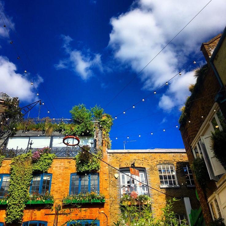 Neal's Yard, London Neals yard, House styles, Yard