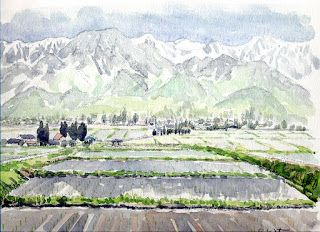 Art Collection: Watercolor 20