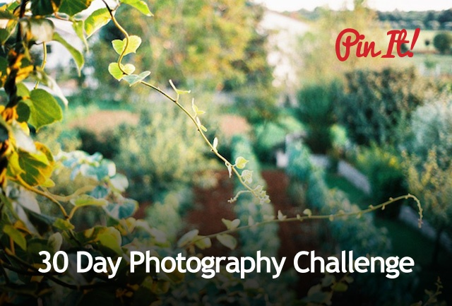 30 Day Photography Challenge - Expert Photography Tutorials