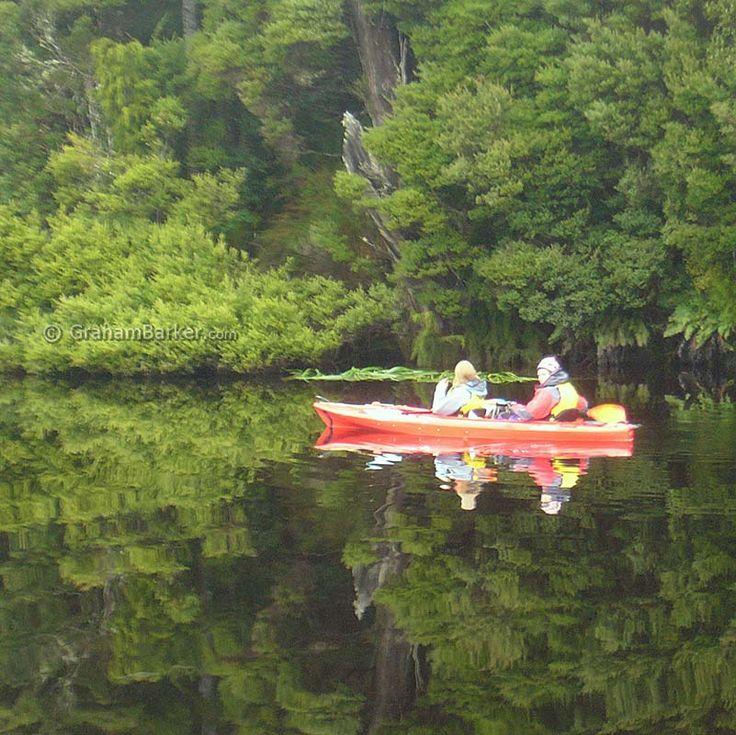 Canoeing on mirror-flat water, Tarkine rainforest, Tasmania