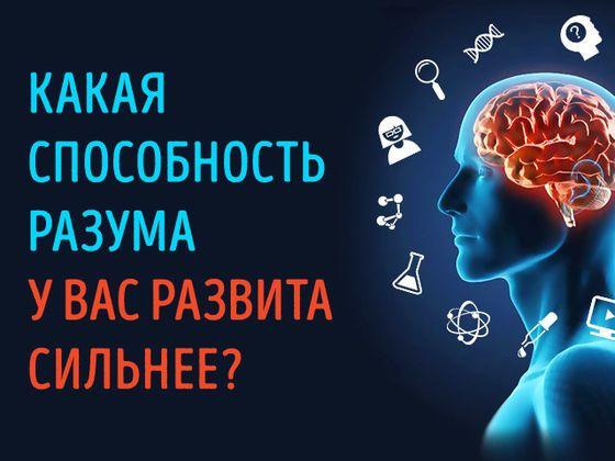 Интуиция? Логика? А может быть, абстрактное мышление?