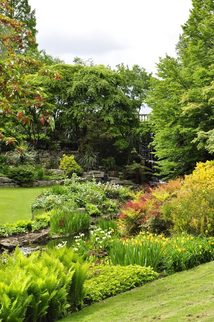 Londyńskie targi Chelsea przyciągają zwiedzających przede wszystkim niezwykłą roślinnością oraz zapierającymi dech w piersiach ogrodami. Zobacz, co przyciągnęło uwagę redakcji Mojego Pięknego Ogrodu podczas Chelsea Flower Show 2015.