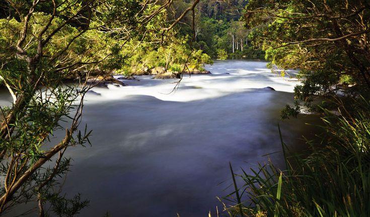 Nymboida River, Nymboi-Binderay National Park. Photo: Rob Cleary