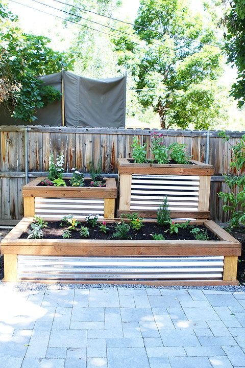 10 Fresh Ideas for Growing Veggies in Your Yard