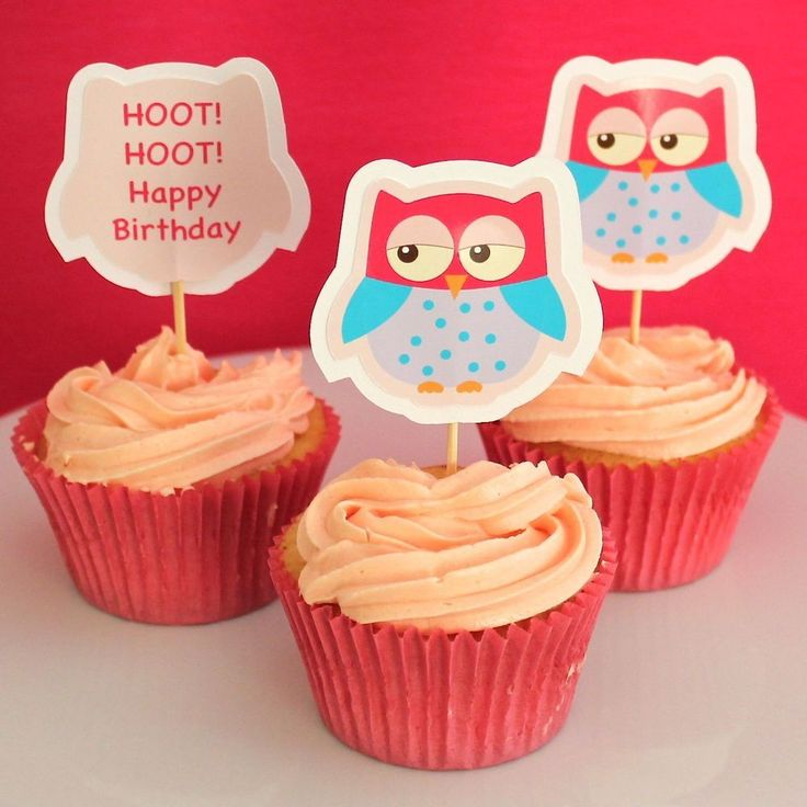 Sweet Owl Cupcake Toppers - 6 Pack