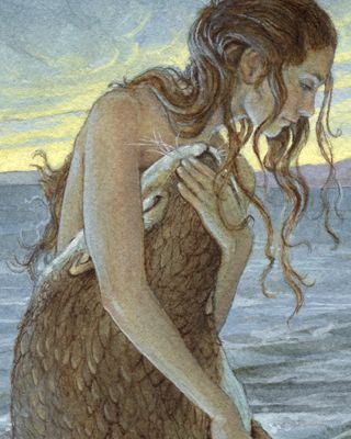 Selkie - a creature of Scottish folklore part human and part seal.