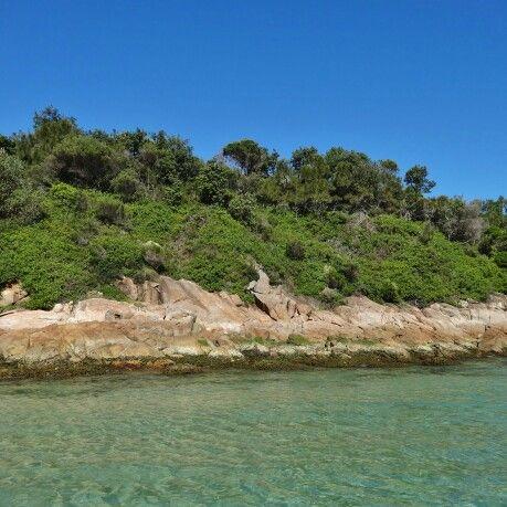 Fingle Island, Port Stephens, Australia