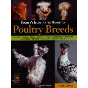 Storey's Illustrated Guide to Poultry Breeds (Paperback) http://www.amazon.com/dp/1580176674/?tag=wwwmoynulinfo-20 1580176674