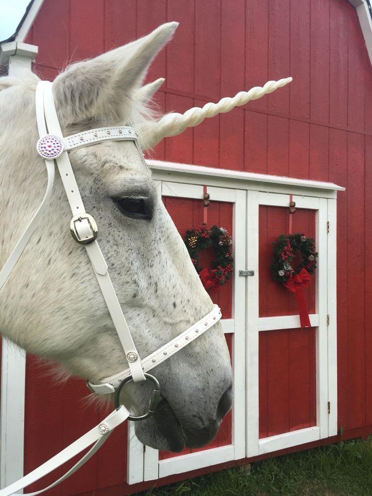 The Painted Pony Custom Tack Leatherwork
